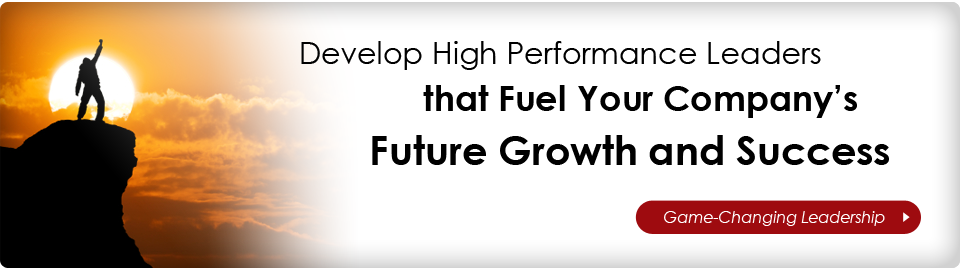 Develop High Performance Leaders and Leadership Teams to Fuel Your Company's Future Growth and Success